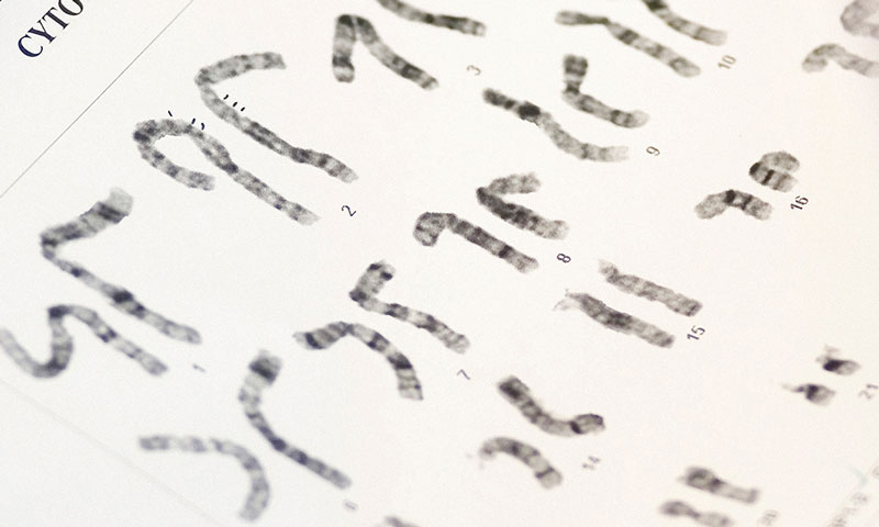 Karyotyping Reagents