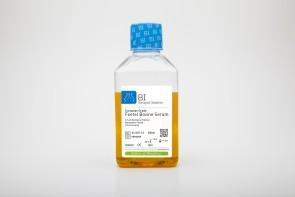 Fetal Bovine Serum (FBS), European Grade