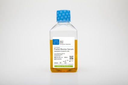 Fetal Bovine Serum (FBS), US Origin, Heat-Inactivated, Qualified for Human Embryonic Stem Cells