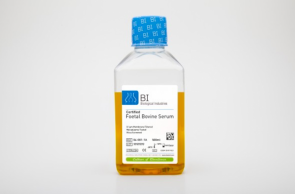 Fetal Bovine Serum (FBS), US Origin, Stem Cell Qualified for Mesenchymal Stem Cells