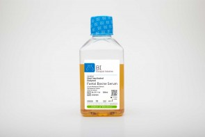 Fetal Bovine Serum (FBS), US Origin, Dialyzed