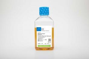 Fetal Bovine Serum (FBS), US Origin, Dialyzed