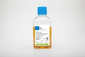 Fetal Bovine Serum (FBS), US Origin, Heat-Inactivated, Qualified for Human Embryonic Stem Cell