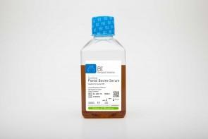Fetal Bovine Serum (FBS), US Origin, Qualified for Mesenchymal Cells