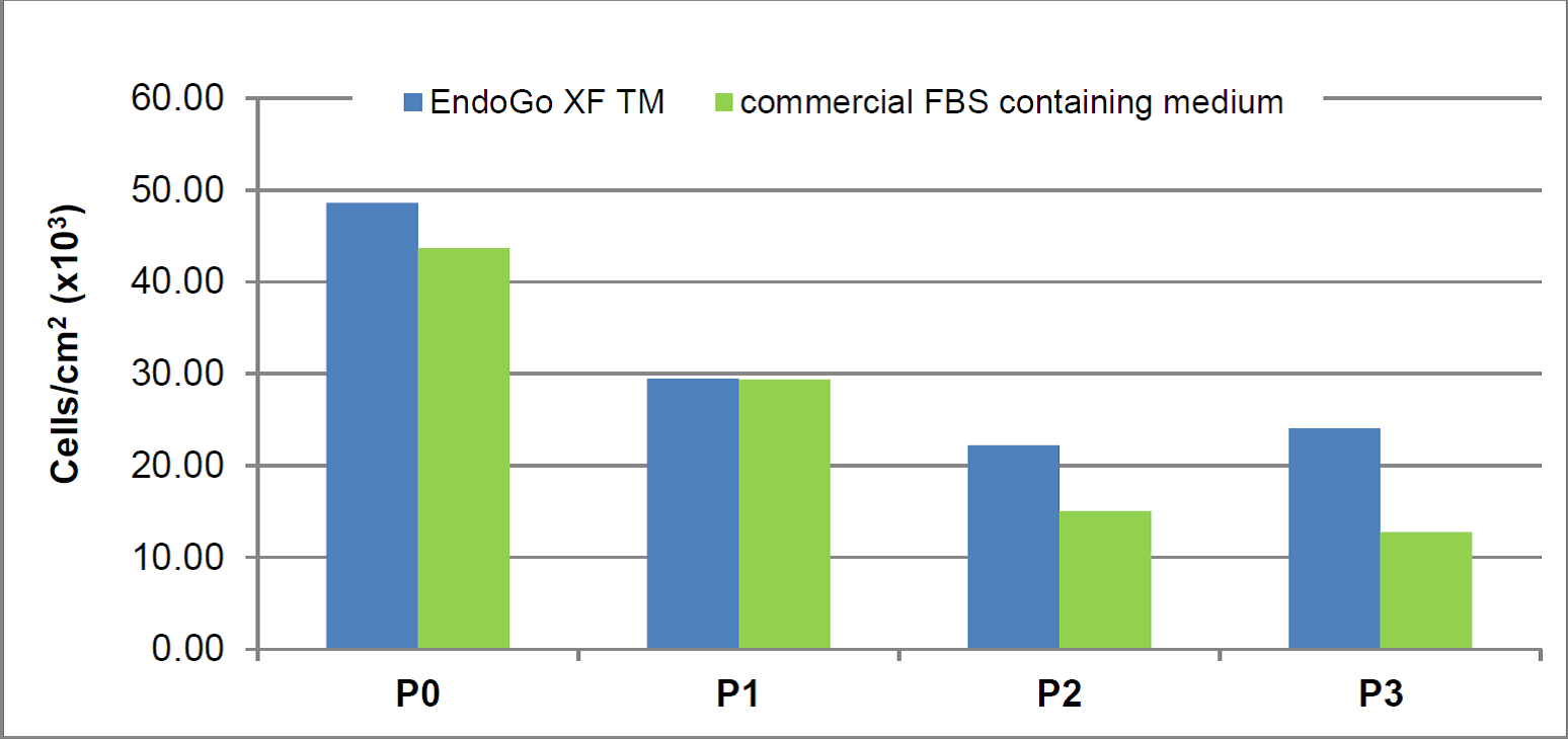HDMEC endothelial cells proliferation in EndoGo XF Media