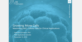 Maximizing MSC Culture Yield for Clinical Applications webinar