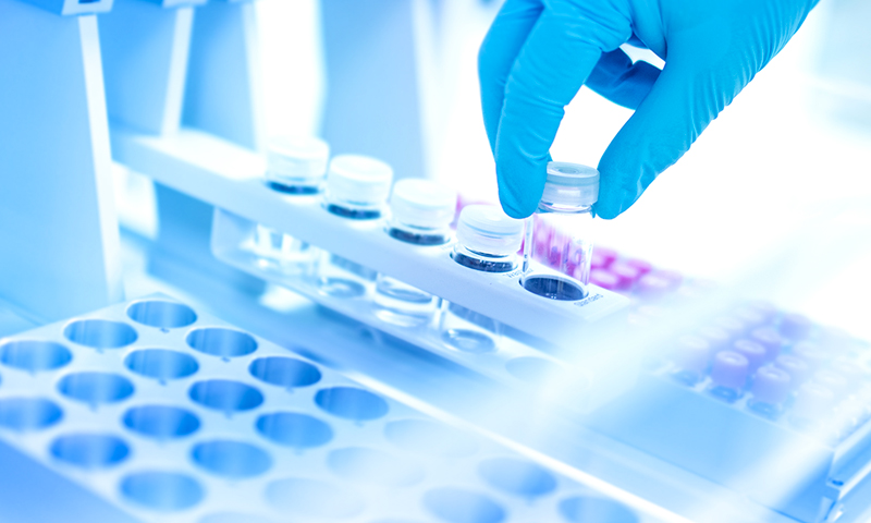 Thesis molecular biology