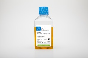 Certified Fetal Bovine Serum (FBS)